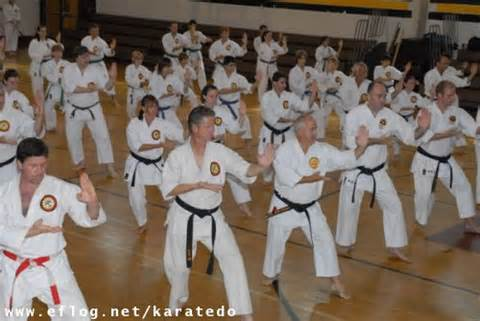 karate do,kung fu,londrina,curitiba,blumenau.joinville,florianópolis