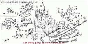 Honda C50 Cub 1984  E  England Wire Harness  C50