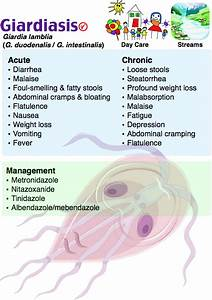 Learn All About Giardiasis And Other Infectious Diseases