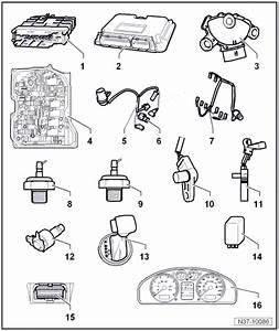 Volkswagen Workshop Manuals  U0026gt  Golf Mk5  U0026gt  Power
