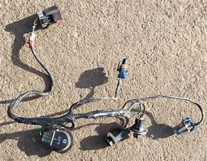 2004 Jeep Wiring Harness : 1999 2004 jeep grand cherokee headlight lamp wiring wire ~ A.2002-acura-tl-radio.info Haus und Dekorationen