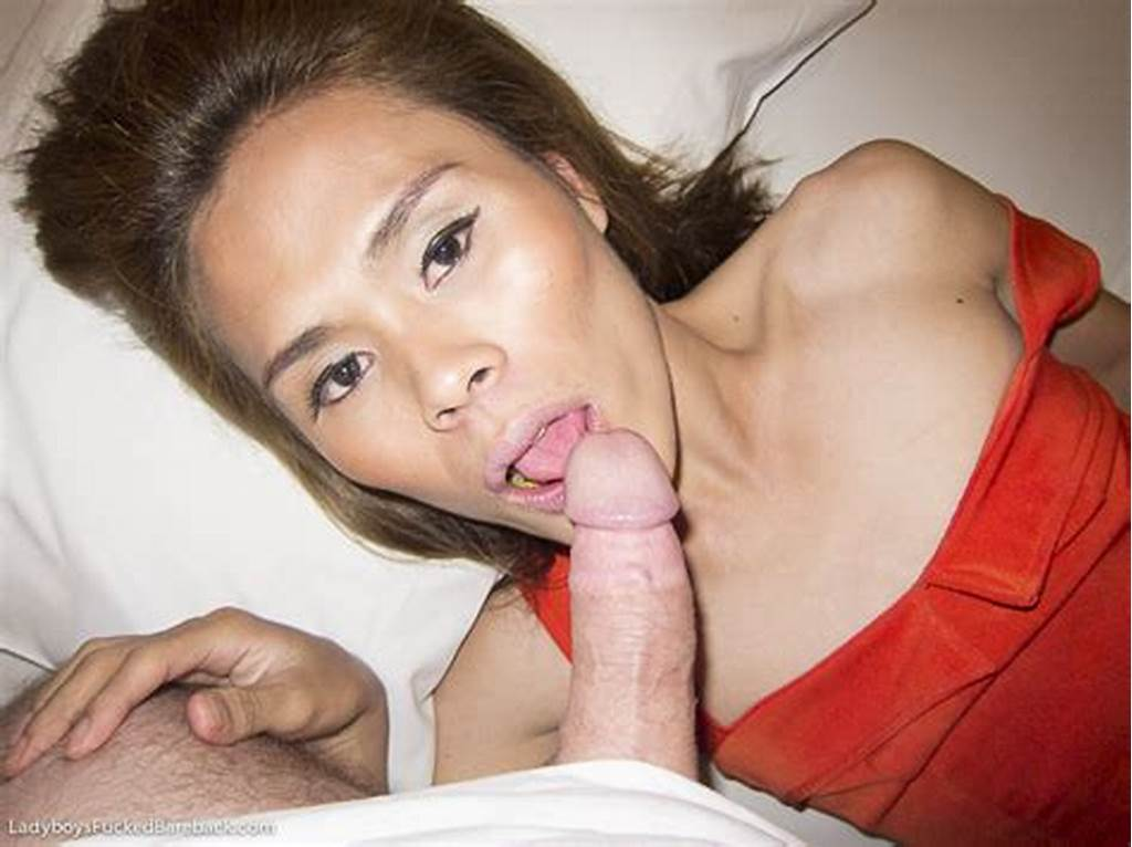 #Asian #Femboy #Nude #At #Shemales #Fucked