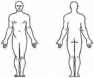 Human Body Anatomy Outline Printable for Kids - Health ...