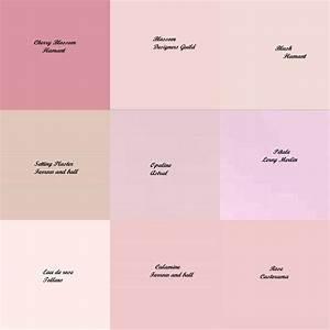 les 25 meilleures idees de la categorie nuancier tollens With palettes de couleurs peinture murale 7 les 25 meilleures idees concernant murs roses sur