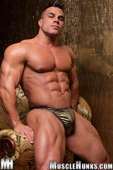 Free gay muscle porn pictures