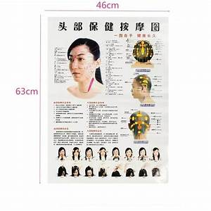7pcs Set English Hand Foot Ear Body Meridian Points Of