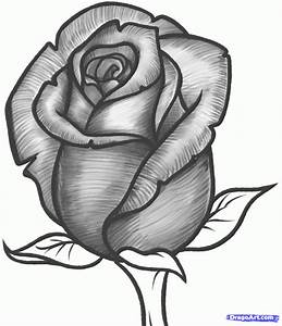 Rose Pencil Sketch Drawing Pencil Sketches Of Flowers Rose ...