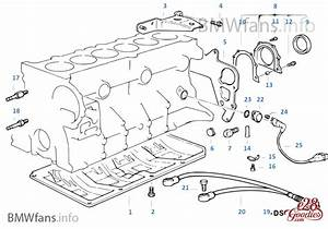 Bmw M50 Engine Diagram