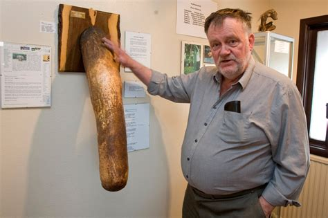 Worlds Largest Penis Museum Youtube