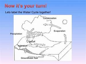 34 Water Cycle Diagram To Label