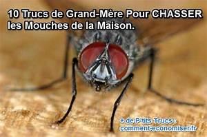 Comment Chasser Les Mouches : 10 trucs de grand m re pour chasser les mouches de la ~ Melissatoandfro.com Idées de Décoration