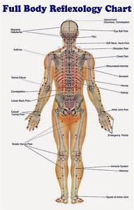 Full Body Reflexology Chart
