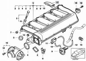 Original Parts For E46 330d M57 Touring    Engine   Intake