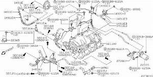 Infiniti M45 Hose Evaporator Contour  Hose Fuel