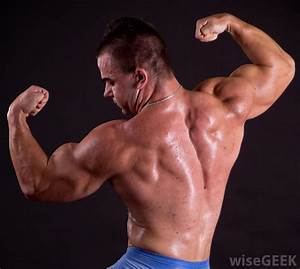 What Are The Different Types Of Bodybuilding Supplies