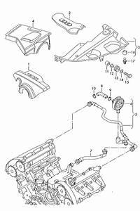 2003 Audi A4 Avant Vent Tube  Breather Tube  Ventilation