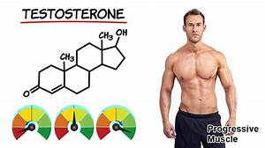 Testosterone Levels