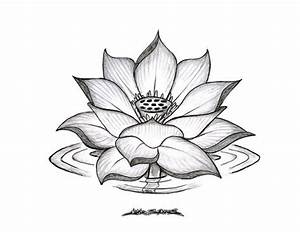 Full Hd Sketches Of Flowers Pencil Drawings: Pencil ...