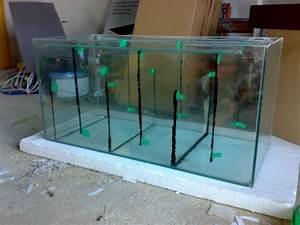 Aquarium Selber Bauen Plexiglas : amazonasbecken filterbecken ~ Watch28wear.com Haus und Dekorationen
