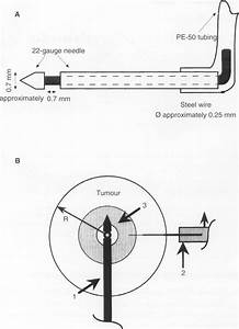 A Schematic Diagram Of Infusion Needle  The Needle Was