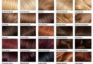 Hair Color Chart  Shades Of Blonde  Brunette  Red  U0026 Black