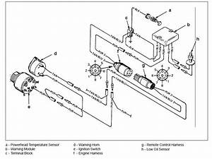 Boat Wiring Diagram For 2000 Fisher Pontoon Mercury In  Out