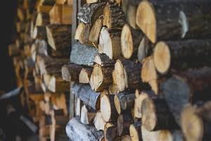 Brennholz Richtig Lagern : brennholz richtig lagern so machen sie es richtig ~ Watch28wear.com Haus und Dekorationen