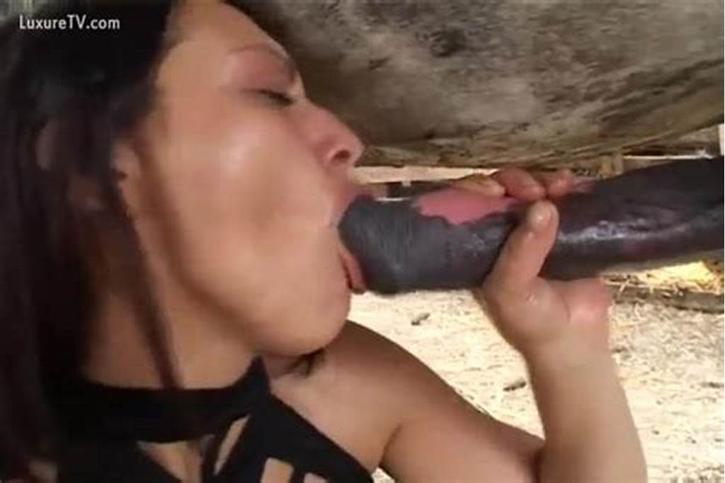 #Horny #Whore #Swallows #Horse'S #Wang #On #Her #Ranch