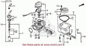 Honda Nn50md Gyro 1984  E  Usa Carburetor