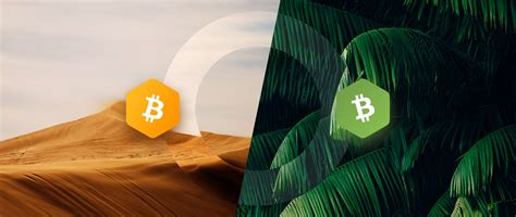 Get started with cash boost what is bitcoin? Bitcoin vs. Bitcoin Cash: The Full Comparison