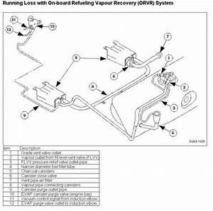 Xjr Vacuum Line Diagram  - Jaguar Forums