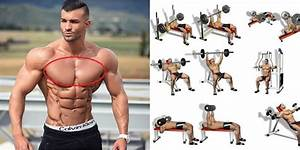 The Ultimate Beginner U2019s Chest Workout  U2013 All