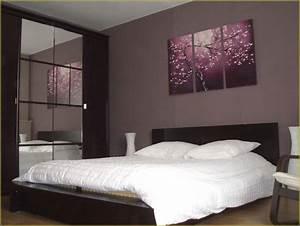 idee couleur chambre amis tinapafreezonecom With meilleur couleur pour chambre