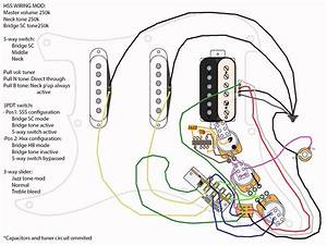 Fender Strat Hss S1 Switch Wiring Diagram