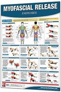 Trigger Point And Myofascial Release Exercise Posters Are