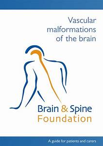 Vascular Malformations Of The Brain By Brain  U0026 Spine