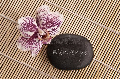 Word Bienvenue Meaning Welcome In French Written On A ...