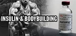 Insulin And Bodybuilding