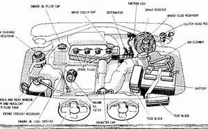 Detailed Car Engine Diagram