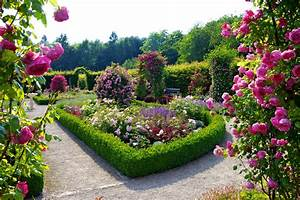 Flower garden wallpapers best wallpapers for Garden wallpaper