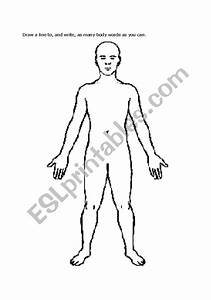 English Worksheets  Body Diagram