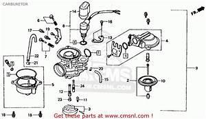 Honda Ch80 Elite 80 1989  K  Usa Carburetor
