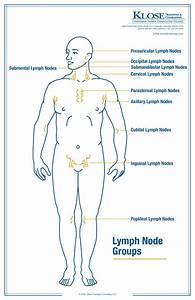38 Best Lympedema Lipedema Dercum U0026 39 S Disease Adiposa