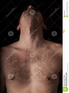 Chest And Neck Stock Photo  Image Of Anatomy  Body  Part