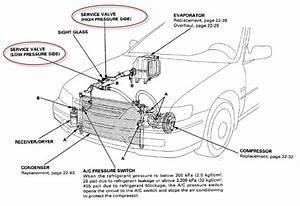 96 Honda Accord Air Conditioner Wiring Diagram