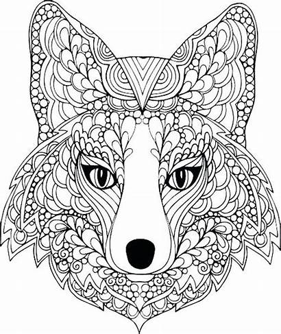 Coloring Pages Teens Animal Cool Sheets Printable