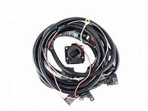 2009 Dodge Dakota Trailer Tow Wire Harness Kit  With 7