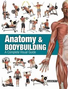 Anatomy  U0026 Bodybuilding  A Complete Visual Guide By Ricardo