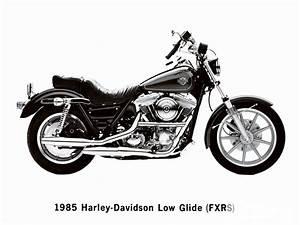 1990 Harley Davidson Fxr Wiring Diagram