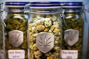Free Nav Charts 5 Charts Explaining Colorado S First Year Of Weed